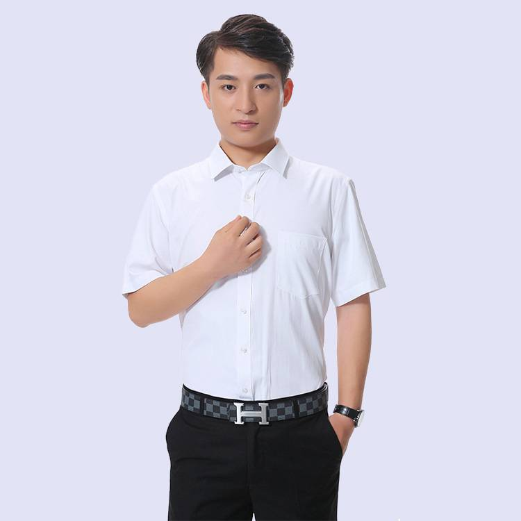 夏季新款商务男式衬衣 企业白领职业装 短袖衬衫厂家批发