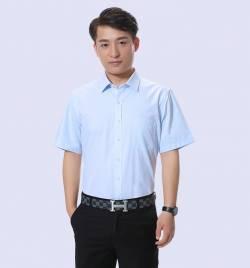 夏季新款商务男式衬衣 企业白领职业装 短袖衬衫批发厂家